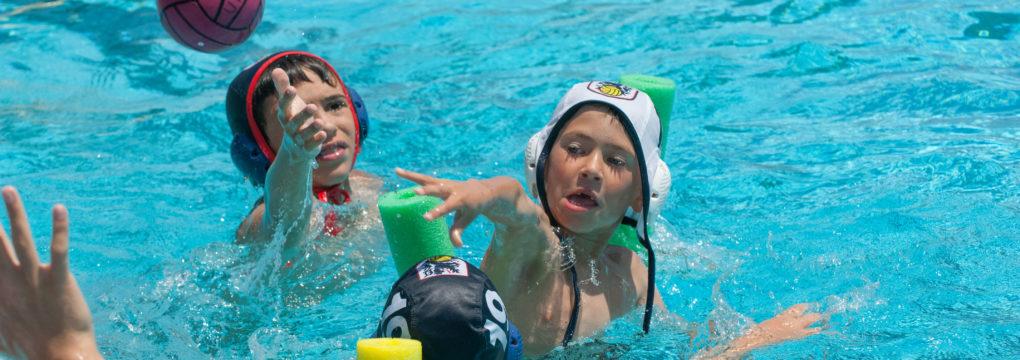 Golden West Swim Lessonssummer Swim Lessons At Golden West College